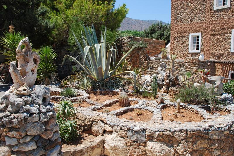 Chersonissos, Chipre, Grécia - 31 07 2013: Jardim dos cactos espinhosos verdes que crescem sob o sol abrasador e um céu profundo imagens de stock