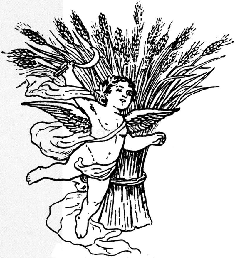 Cherubin-003 Free Public Domain Cc0 Image