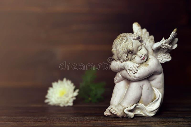 Cherubino e fiore bianco su fondo scuro fotografia stock