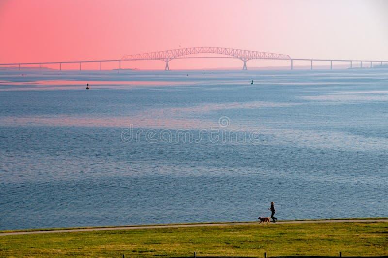 chesapeake γεφυρών κόλπων δρομέας στοκ φωτογραφία με δικαίωμα ελεύθερης χρήσης
