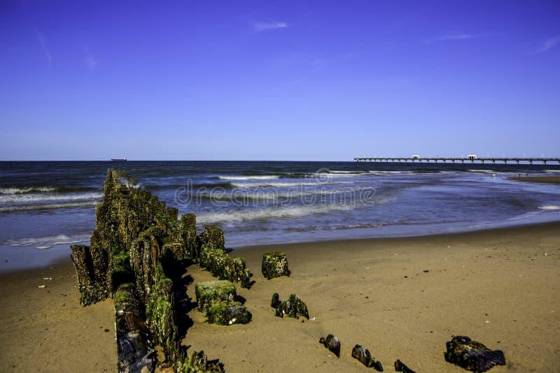 Chesapeake Baai royalty-vrije stock afbeeldingen