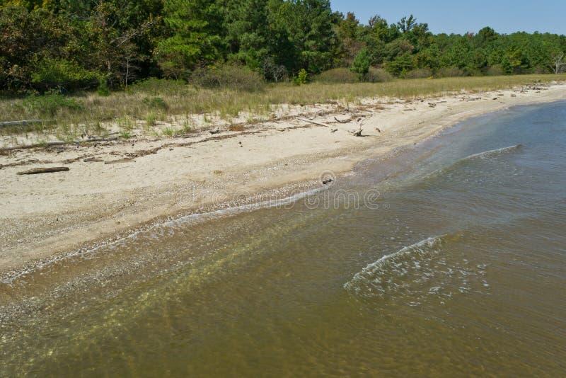 Chesapeake Bay Beach. Driftwood, small waves, and beachgrass at a nature park near Lusby, Maryland USA stock photos