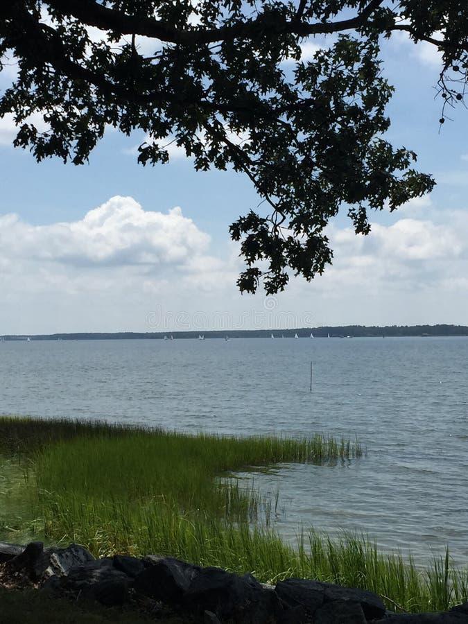 Chesapeake de Mening van het Baaiwater stock foto's
