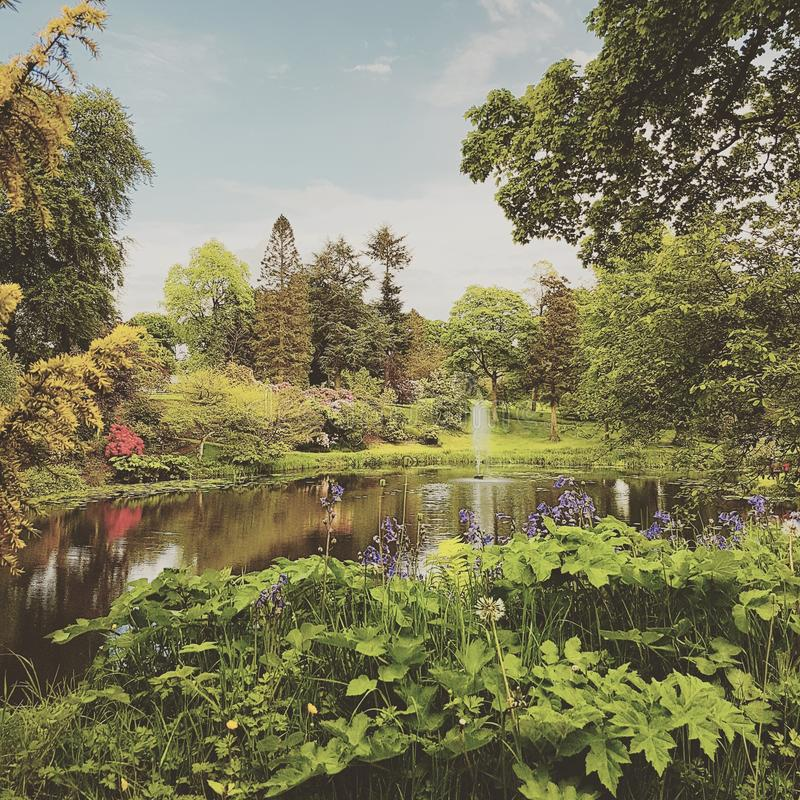 Cheshire Country Garden royalty free stock photography