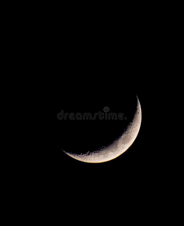 Cheshire kota uśmiechu księżyc fotografia stock