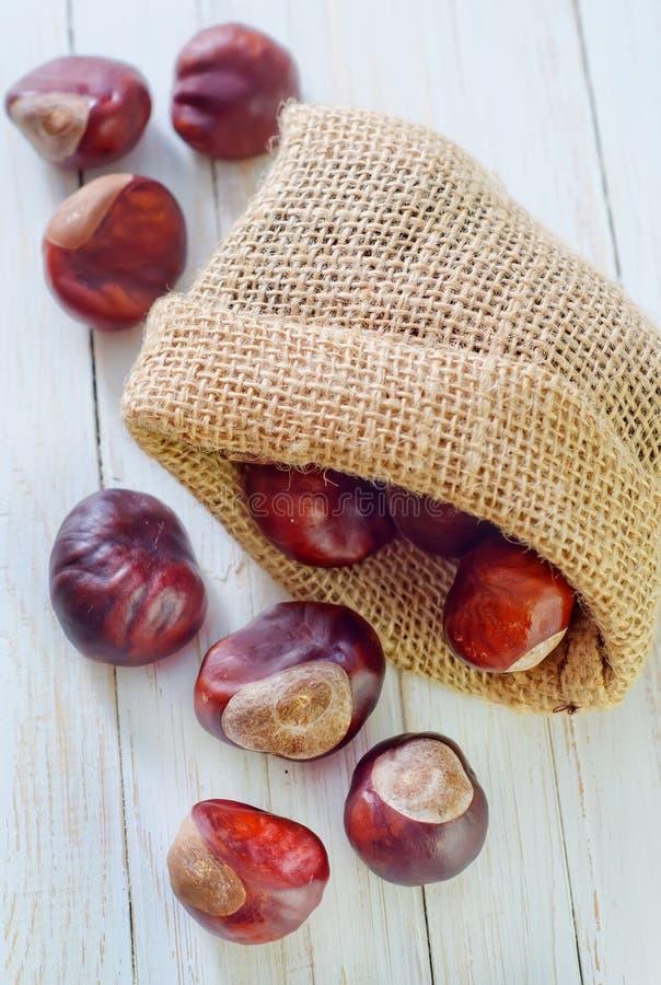 Download Chesnuts стоковое фото. изображение насчитывающей продукция - 41660108