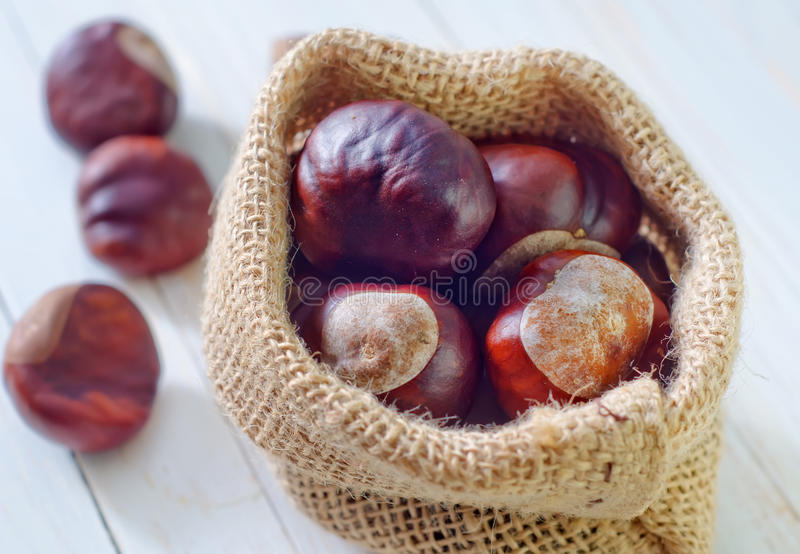 Download Chesnuts стоковое изображение. изображение насчитывающей conker - 41660325