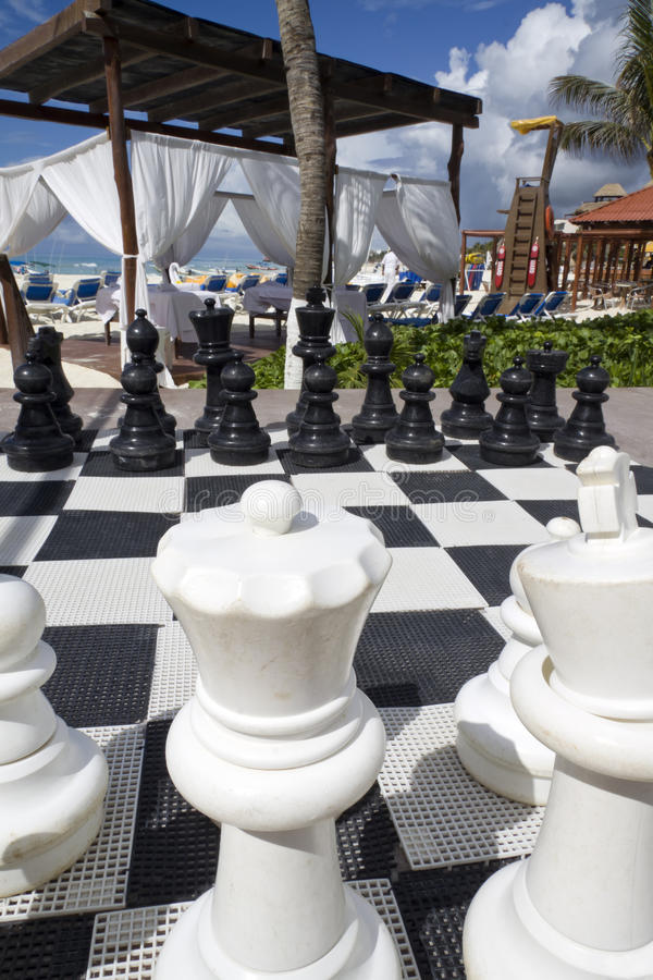Download Chess Board stock image. Image of white, knight, piece - 24654409