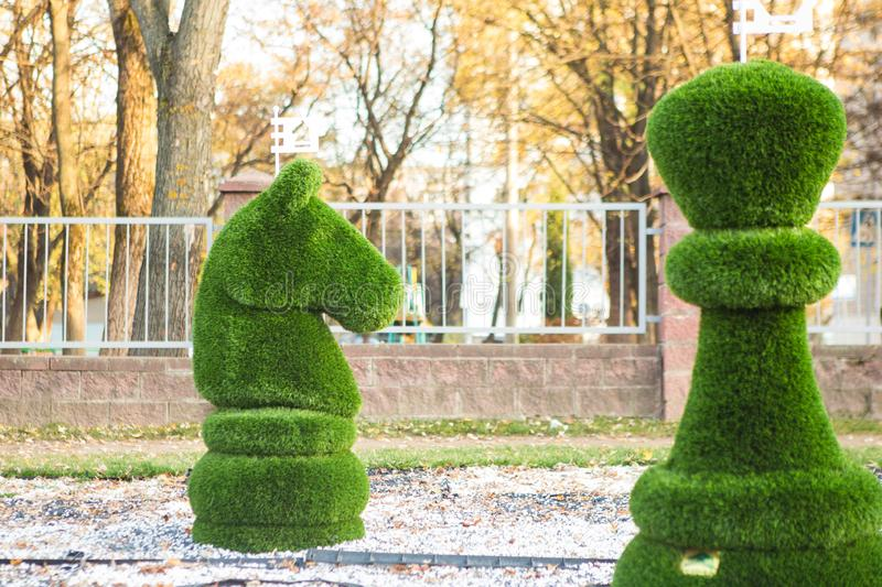 Chess figures covered with grass. Minsk/ Belarus - September 17 2019: chess figures covered with grass stock images