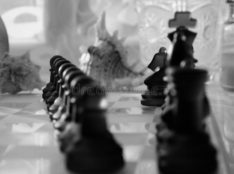 Chess. Glass chess with shell on the background stock photography