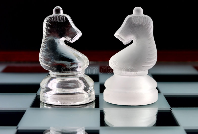 Chess knights royalty free stock images