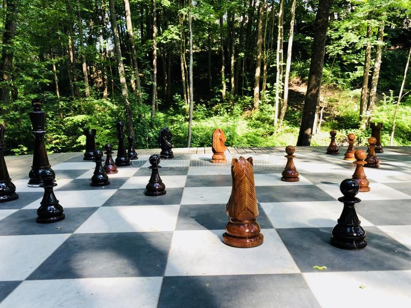 Chess of Nature stock photography
