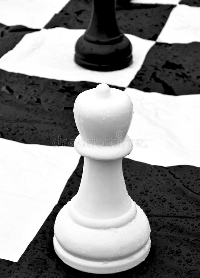Download Chess pawn stock image. Image of chess, leisure, white - 14545613