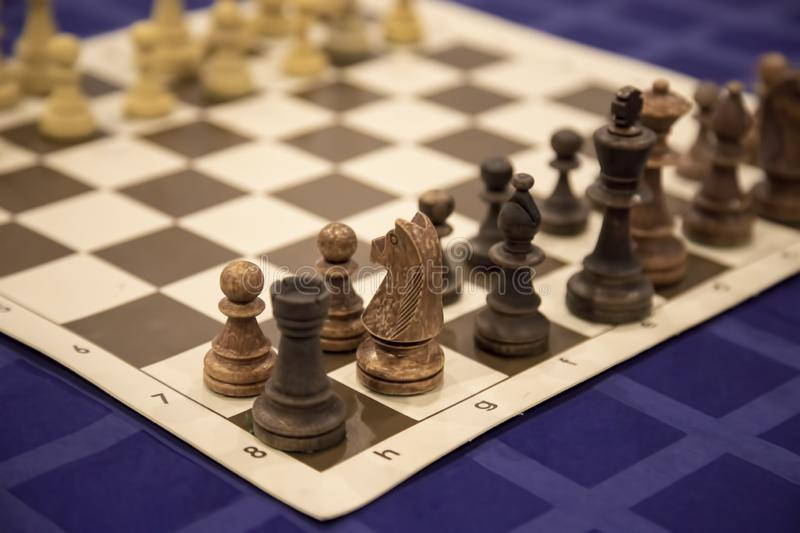 Chess pawns on the chessboard. Closeup royalty free stock photos