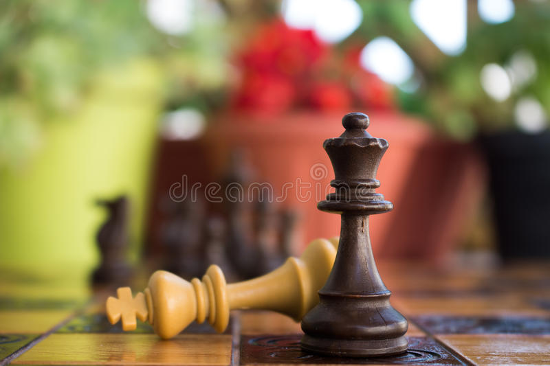 Chess. Photographed on a board stock images
