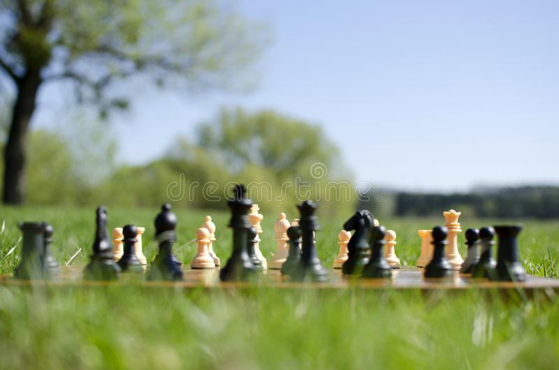Chess pieces on board. In green grass royalty free stock image
