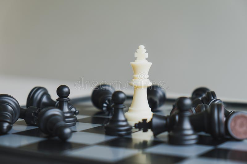Chess pieces on board with white background, driven to success Business Strategy.  stock photography