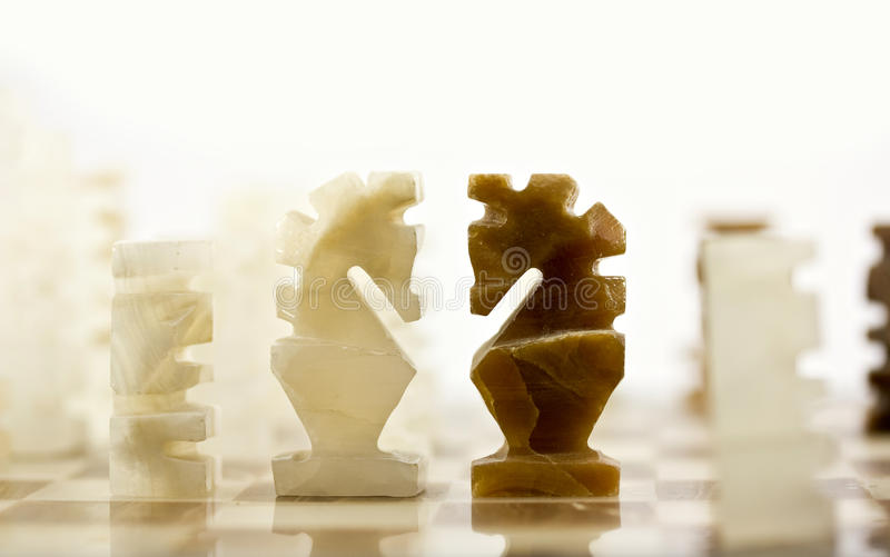 Chess pieces - knights face off stock image