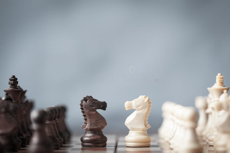Chess pieces knights facing each other for a standoff on chessboard with blurred background. royalty free stock photography