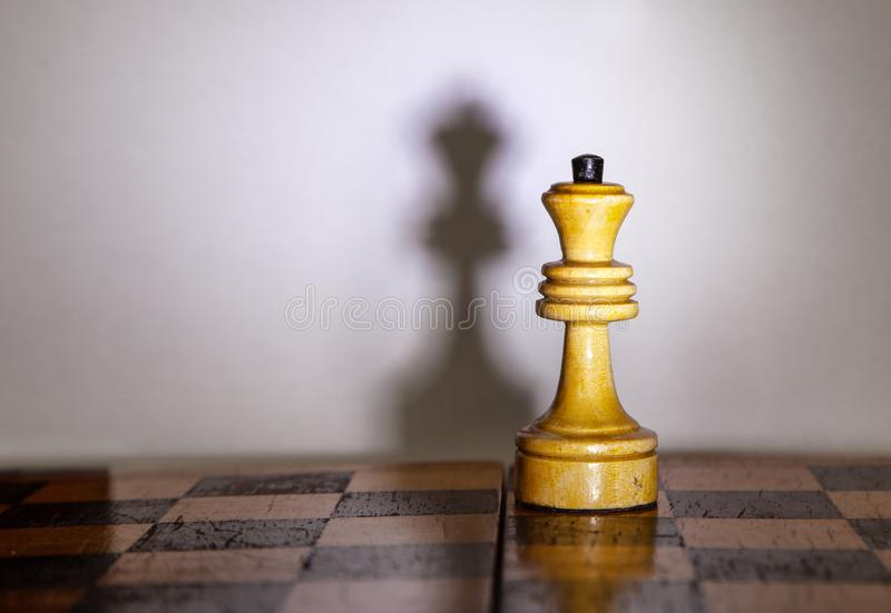 Chess queen with the shadow on chessboard stock photos