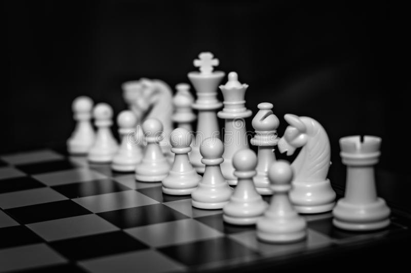 Chess team on a wooden board stock photo