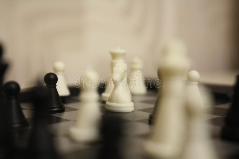 Chess: White Knight stock photography