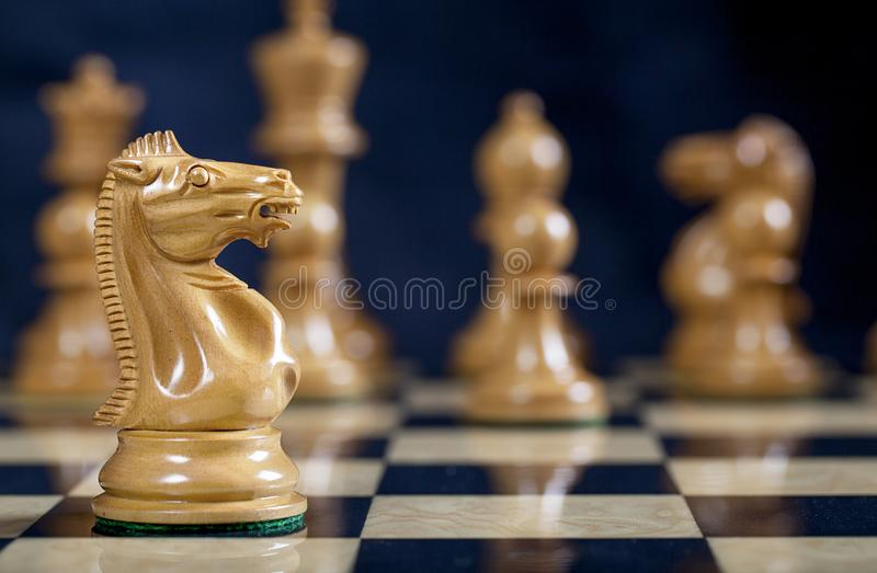 Chess White Knight Piece on Chess Board. A natural wood Knight chess piece on ebony and natural burl chess board with King, Queen, Bishop and Pawns blurred in stock photos