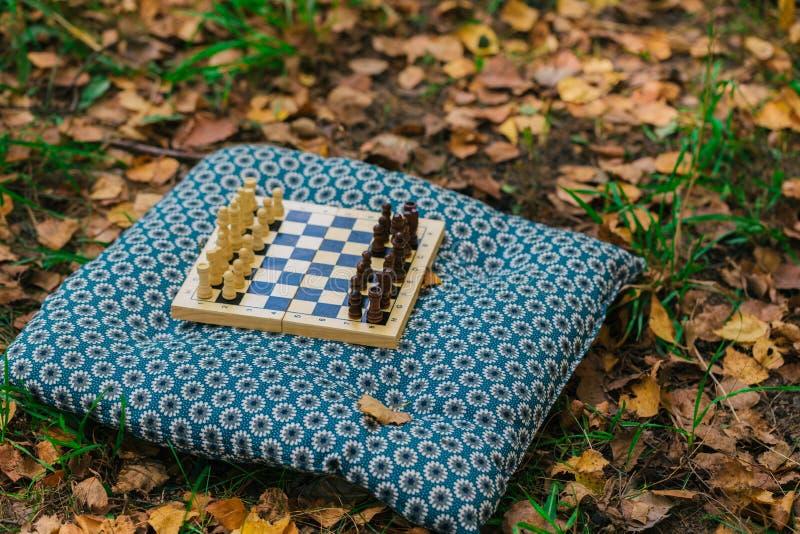 Chessboard de madeira e peças de xadrez na grama verde cobertas com folhas secas amarelas do outono imagem de stock royalty free