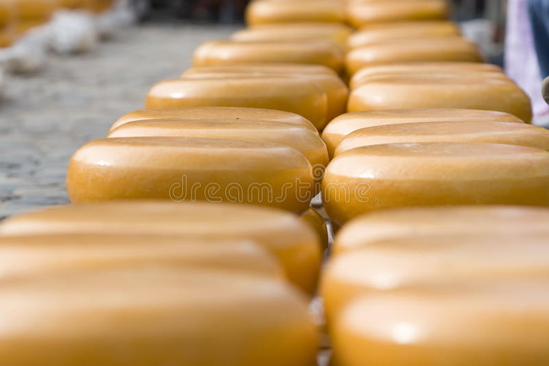 Chesse royalty free stock photo