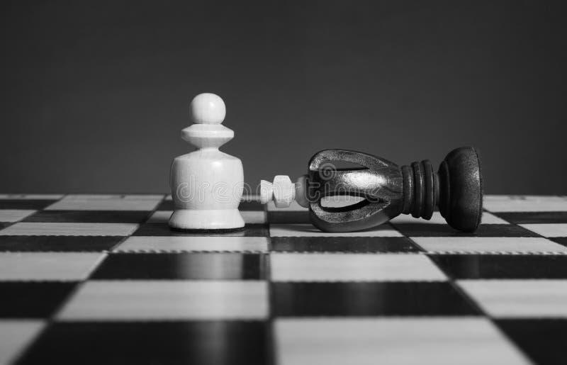 Chessmen. stock photography