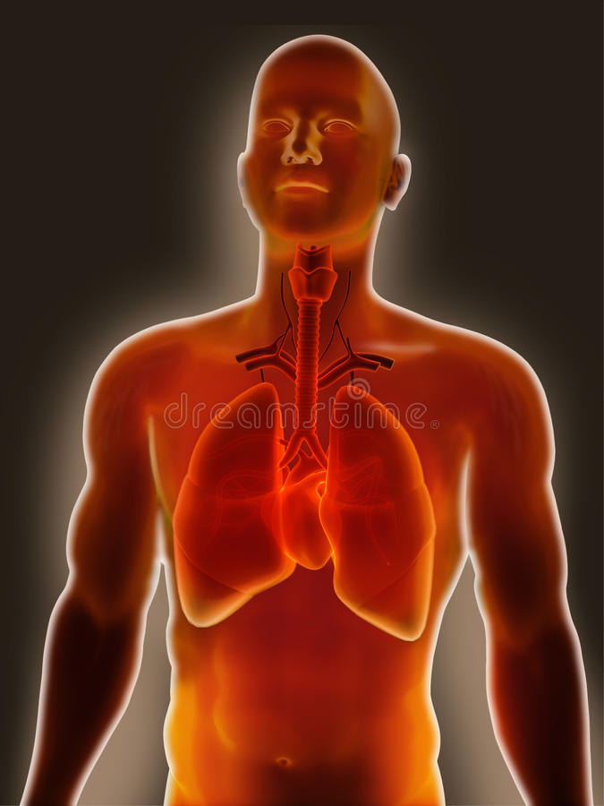 Chest infection stock illustration