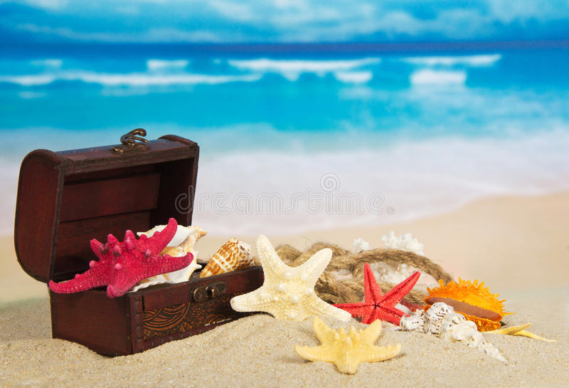 Chest with sea cockleshells and stars stock image