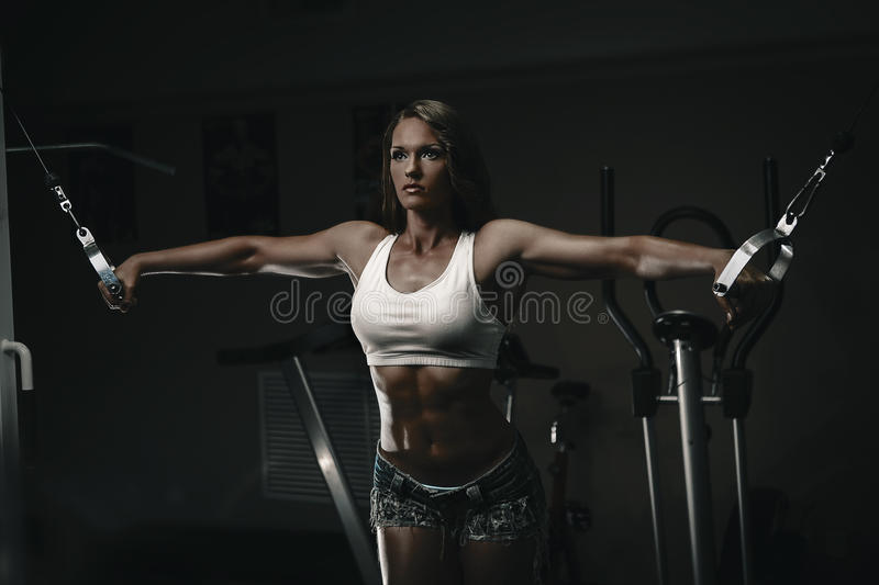 Download Chest training stock image. Image of adult, practice - 34051069