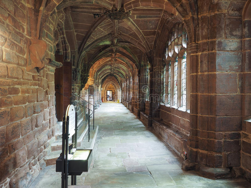 Chester Cathedral i Chester royaltyfria foton