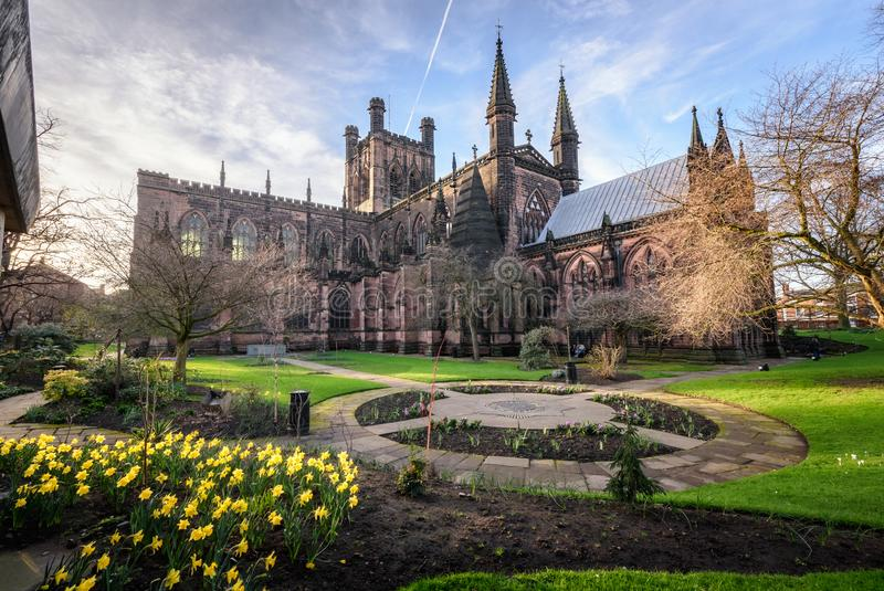 Chester Cathedral Uk royaltyfri bild