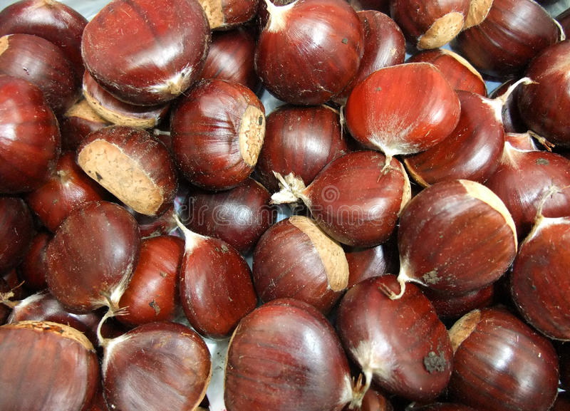 Download Chestnut stock photo. Image of salty, kitchen, autumn - 12532578