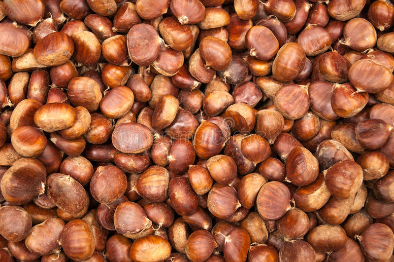 Chestnuts. Horizontal close up photo of some chestnuts stock image