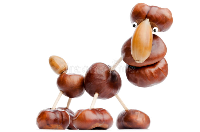 Download Chestnut animal stock image. Image of brown, yourself - 22903293