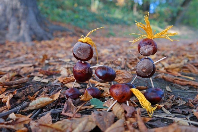 Chestnut Family Royalty Free Stock Photo