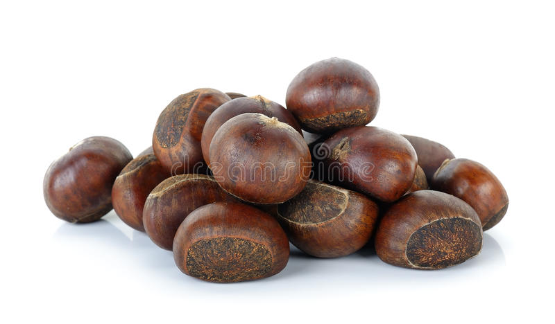 Chestnut isolated on the white background.  royalty free stock image