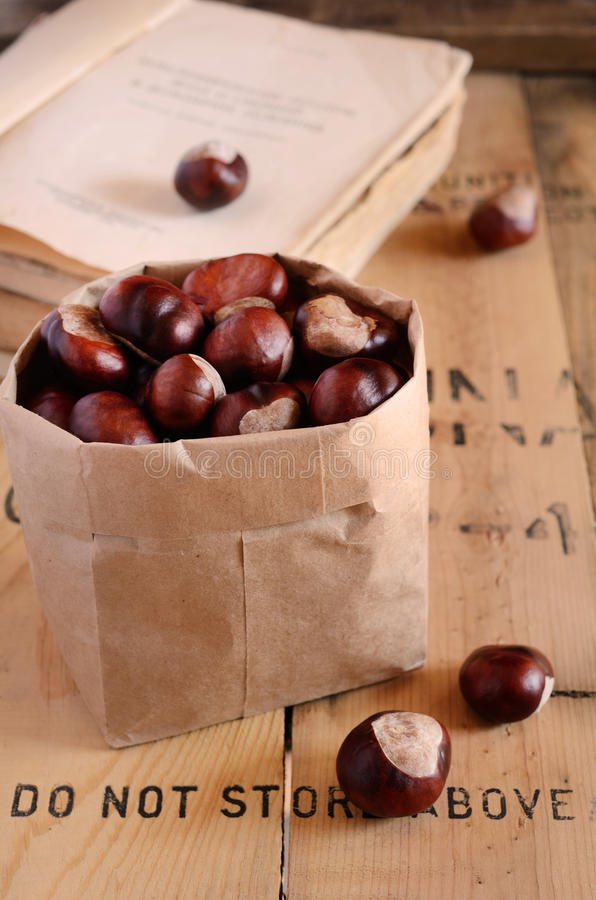 Chestnut In Paper Bag And Vintage Books Royalty Free Stock Photography