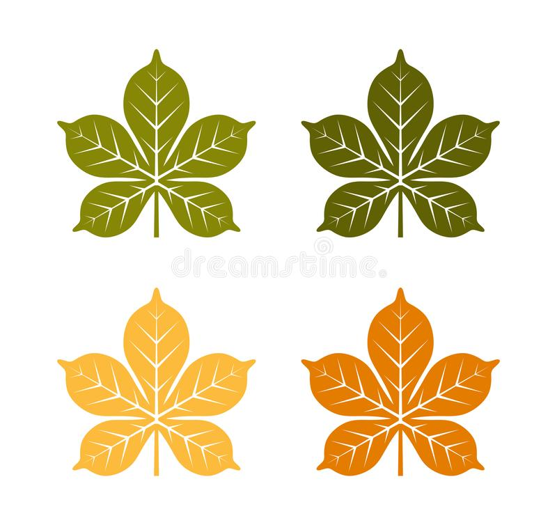 Chestnut tree leaves collection vector illustration