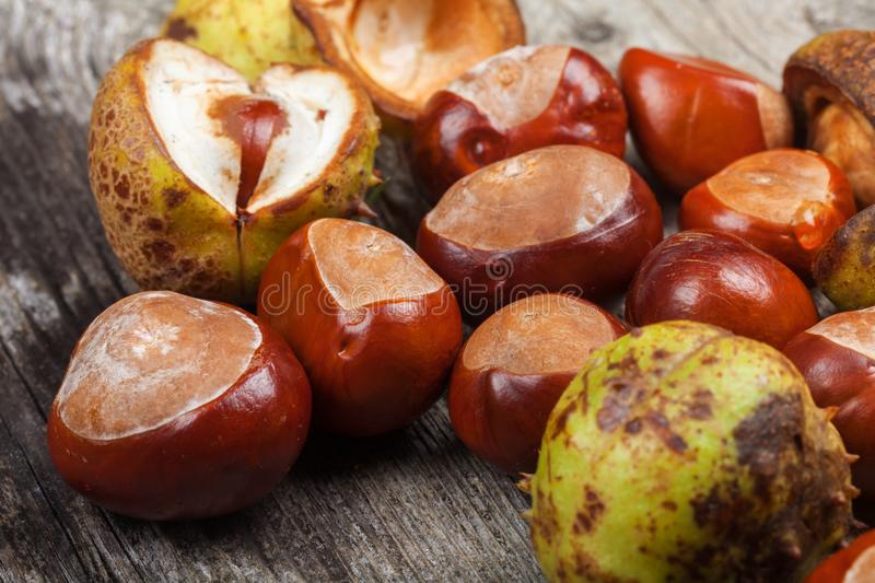 Chestnut on the table. Chestnut on the vintage wooden table stock photo