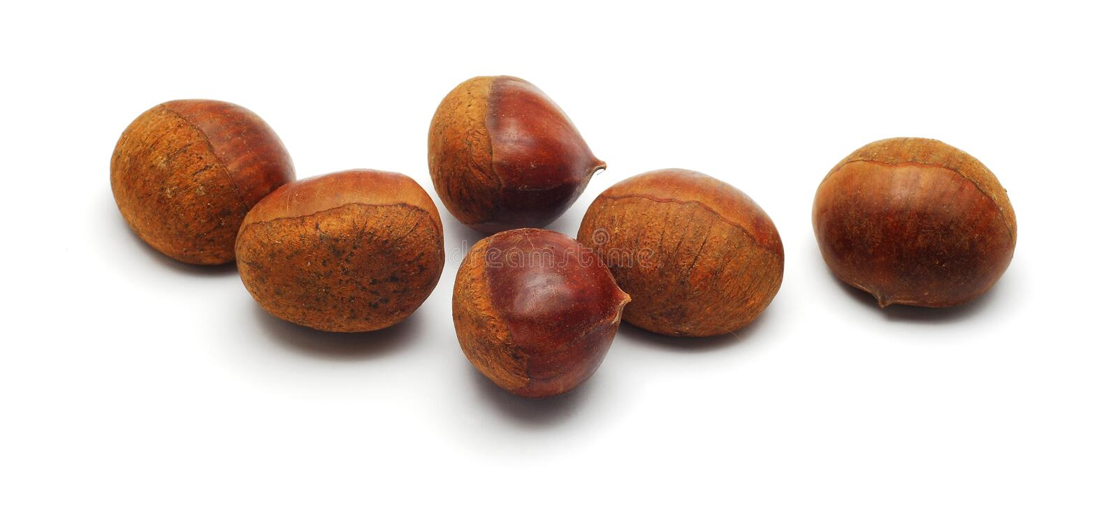Download Chestnuts stock photo. Image of seed, food, small, chestnuts - 17727194
