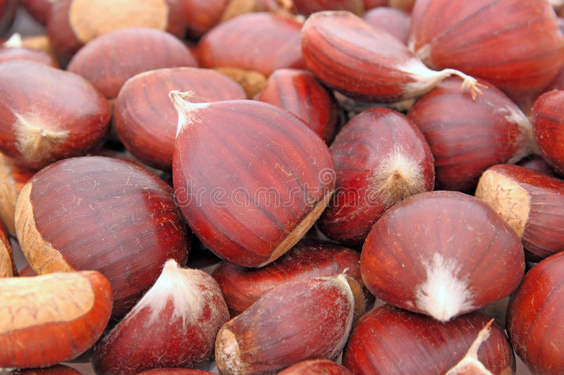 Chestnuts royalty free stock image