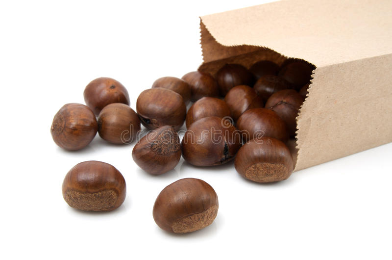 Download Chestnuts stock image. Image of seed, store, roasted - 24445099