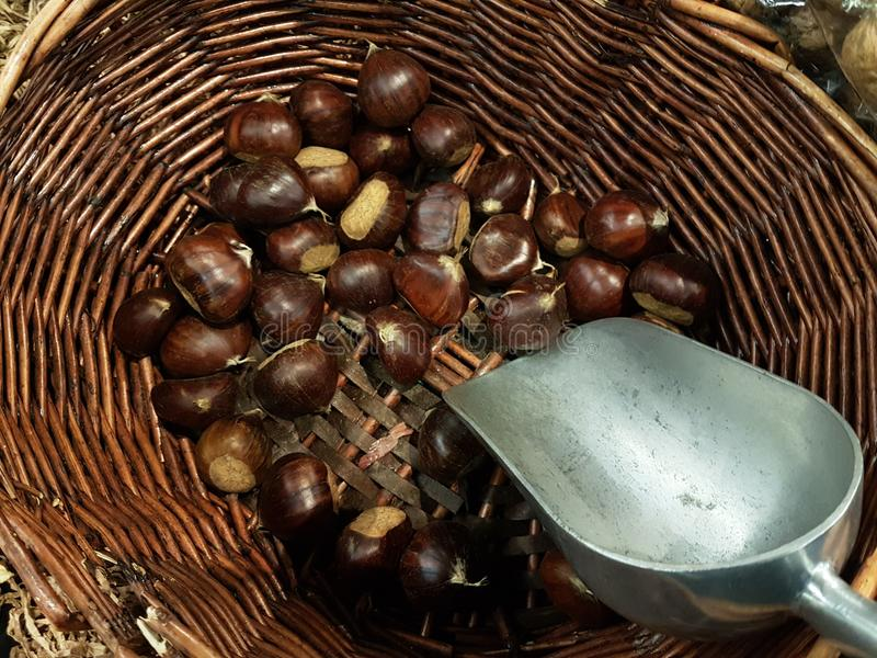 Chestnuts in the basket bailer in market place food background. Colors royalty free stock image