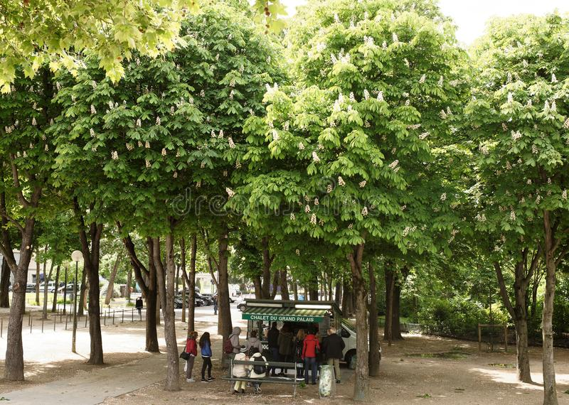 Chestnuts are blossoming at the intersection of the Champs Elysees and Selv Avenue. Citizens shop in an auto shop royalty free stock image
