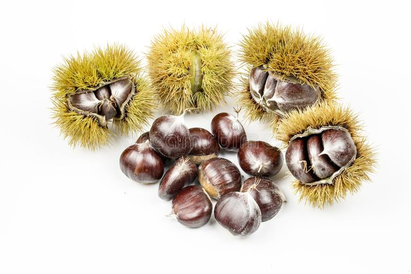 Chestnuts with chestnut leafs isolated on white.  royalty free stock photography