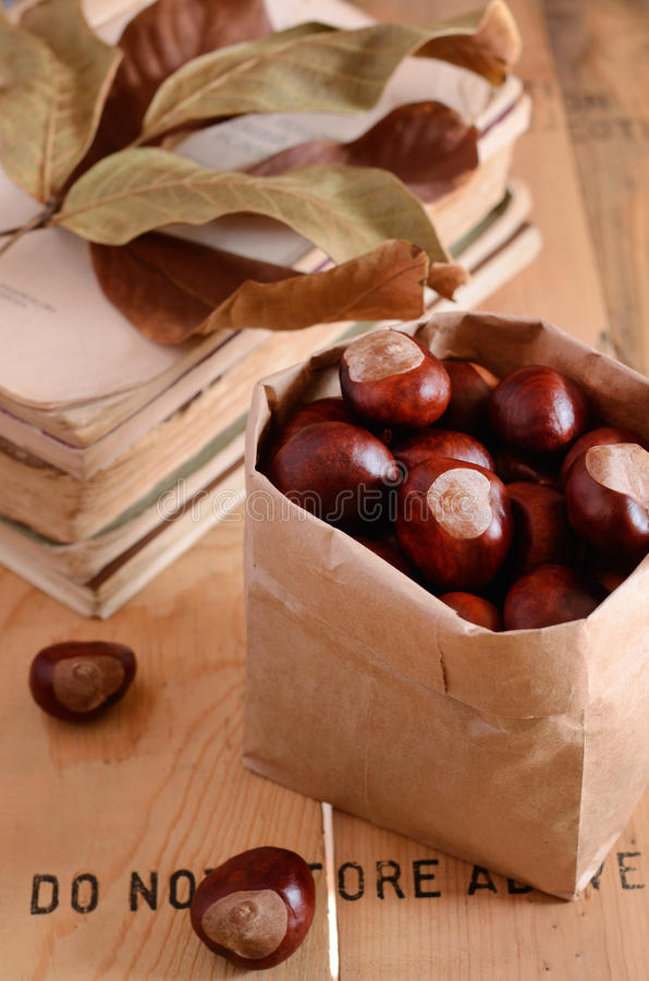 Download Chestnuts In Craft Bag On Rusted Background Stock Image - Image: 33958715
